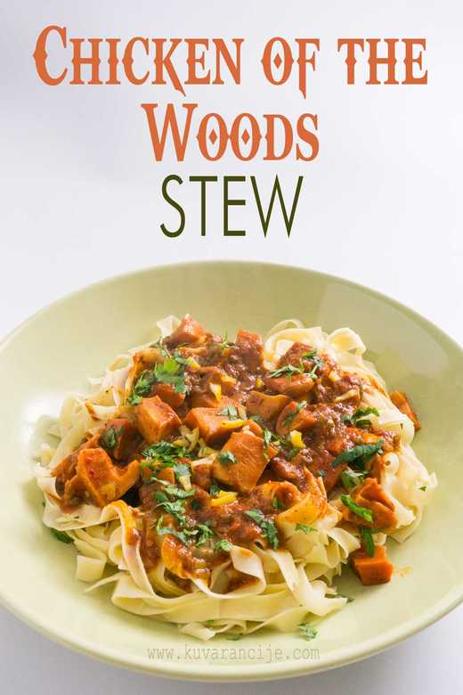 chicken of the woods stew