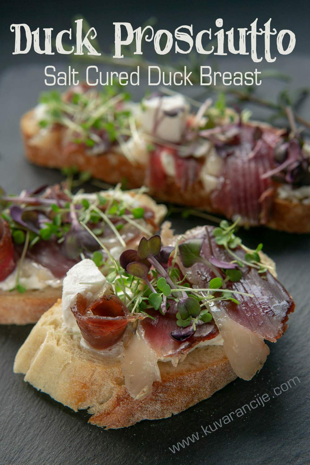 Duck Prosciutto Salt Cured Duck Breast