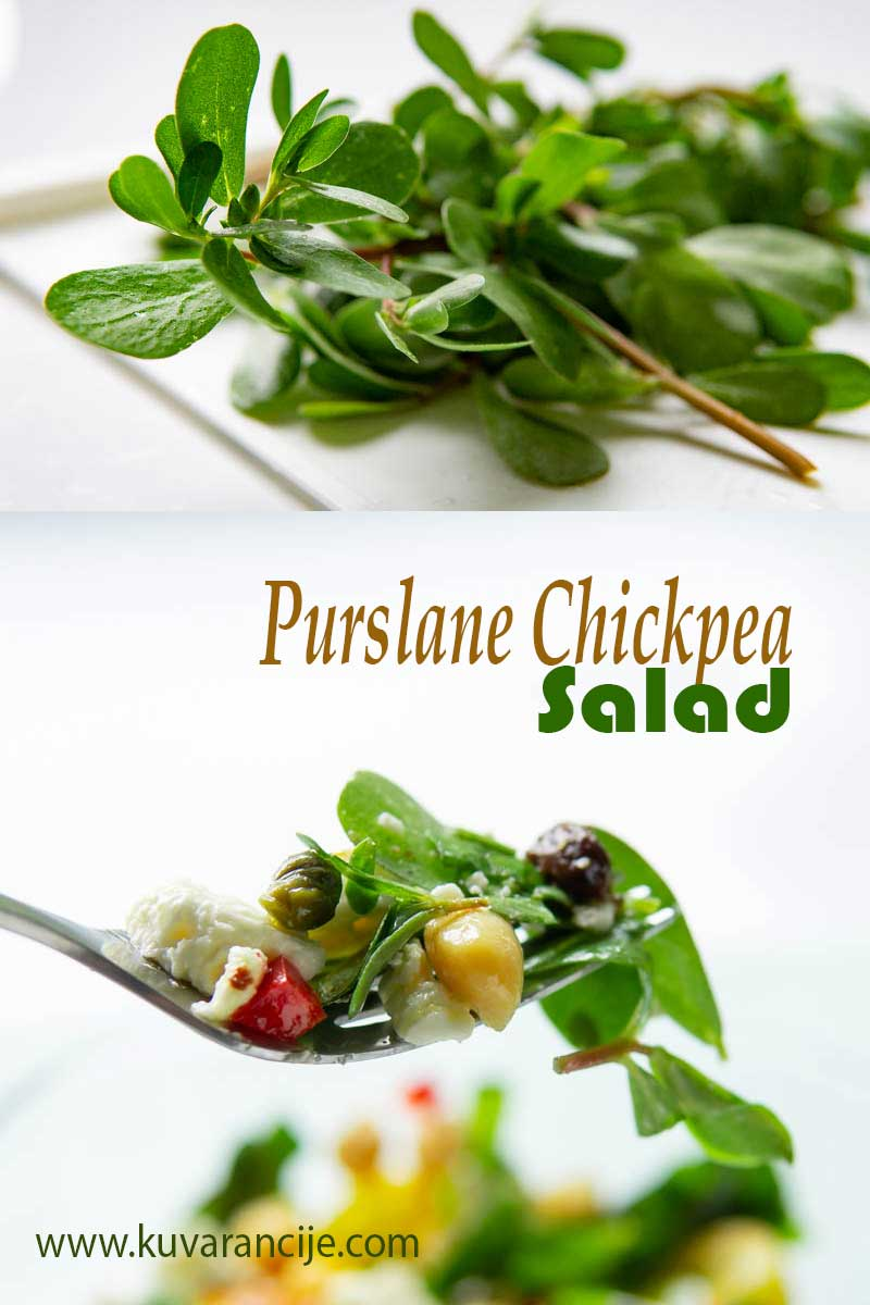 Purslane Chickpea Salad